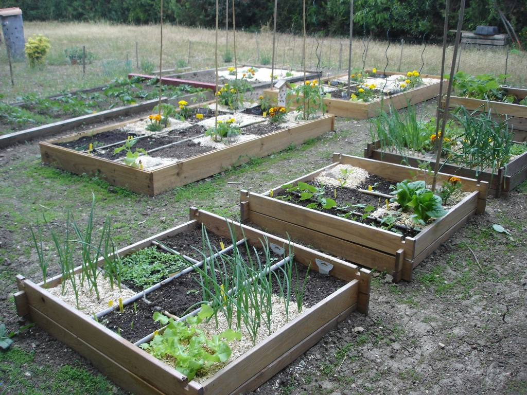 Potager Cuisine Tourcoing 1328